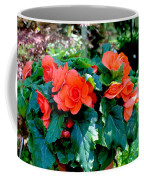 Begonia Plant Coffee Mug