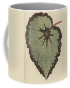 Begonia Rex, Variety Isis Coffee Mug