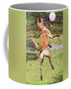 Belgian Shepherd Dog Coffee Mug
