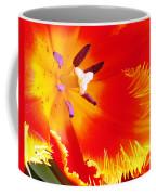 Believe Me Coffee Mug