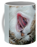 Belly Laugh Coffee Mug