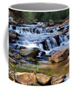 Below Toccoa Falls Coffee Mug