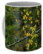 Belted Kingfisher Williams River  Coffee Mug by Thomas R Fletcher