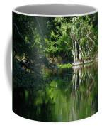 Bend Of The Ocklawaha River Coffee Mug
