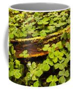 Beneath The Redwoods Coffee Mug