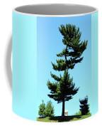 Beneath This Tree Lies Robert Edwin Peary Coffee Mug