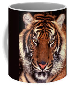 Bengal Tiger - 2 Coffee Mug