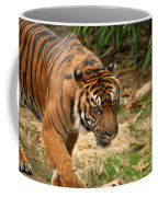 Bengal Tiger II Coffee Mug
