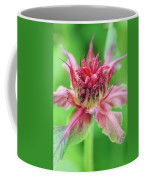 Bergamot Flower Coffee Mug
