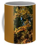 Bernharts Dam 15-126 Coffee Mug
