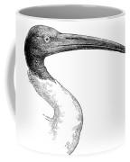 Berniers Ibis Coffee Mug
