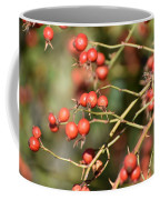 Berry Christmas  Coffee Mug