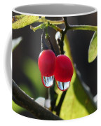 Berry Droplets Coffee Mug