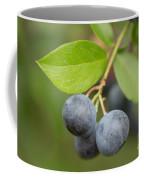 Berrydelicious Coffee Mug