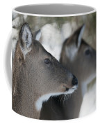 Best Friends Coffee Mug