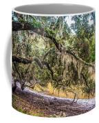 Bethany Cemetery Oaks And Tidal Creek Coffee Mug