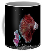 Betta0916 Coffee Mug