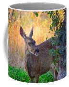 Betty Doe Coffee Mug