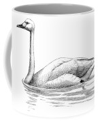 Bewicks Swan Coffee Mug