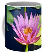 Beyond Beautiful Water Lily Coffee Mug