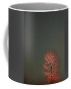 Beyond This Foggy Day Coffee Mug