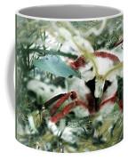 Bflwdg11c Coffee Mug