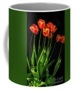 Bicolor Tulips Coffee Mug