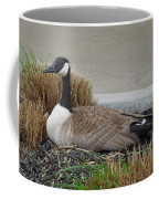 Biding Time Coffee Mug