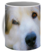 Big Al Coffee Mug