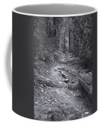 Big Basin Redwoods Sp 1 Coffee Mug