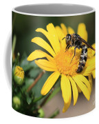 Big Bee On Yellow Daisy Coffee Mug