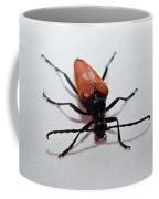 Big Beetle Coffee Mug