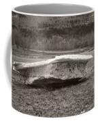 Big Berg Coffee Mug