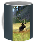 Big Bull 2 Coffee Mug