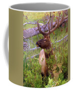 Big Bull Coffee Mug