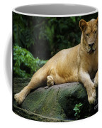 Big Cats 114 Coffee Mug