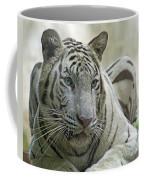 Big Cats 117 Coffee Mug