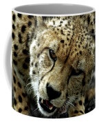 Big Cats 50 Coffee Mug