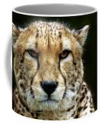 Big Cats 51 Coffee Mug