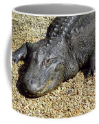 Big Gator Coffee Mug