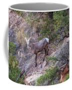 Big Horned Ram Coffee Mug