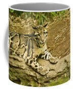Big Kitty Cat Coffee Mug