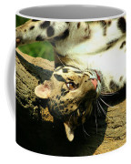 Big Kitty Fun Coffee Mug