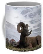 Big Ram Coffee Mug