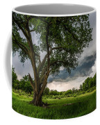 Big Tree - Tall Cottonwood And Storm In Texas Panhandle Coffee Mug