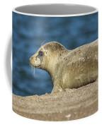 Big Eyed Baby Coffee Mug