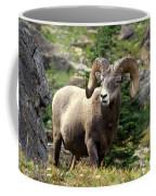 Bighorn 1 Coffee Mug