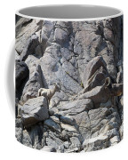 Bighorns Romantic Stare Coffee Mug