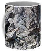 Bighorns Romantic Stare Coffee Mug