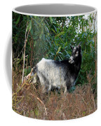 Kerry Mountain Goat Coffee Mug